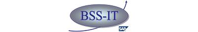 BSS-IT