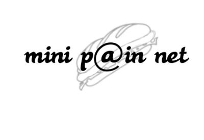 MINI P@IN NET