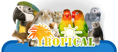 Annuo Le Tropical Animalerie Mons